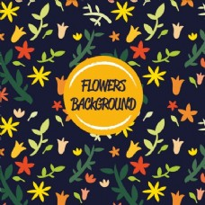 鲜艳的花朵背景