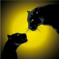 夜间两黑豹图标矢量背景
