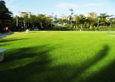 蓝天绿茵草坪