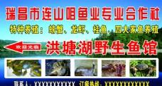 养殖场海报