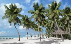 海滩 酒店