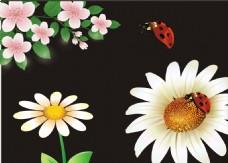 矢量花朵素材 白色花朵
