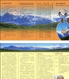 冬虫夏草折页