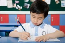 在做作业的可爱男孩图片图片