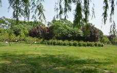 动物园风景 绿化景观