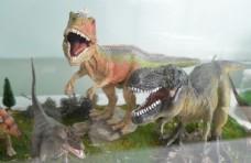 恐龙模型摄影
